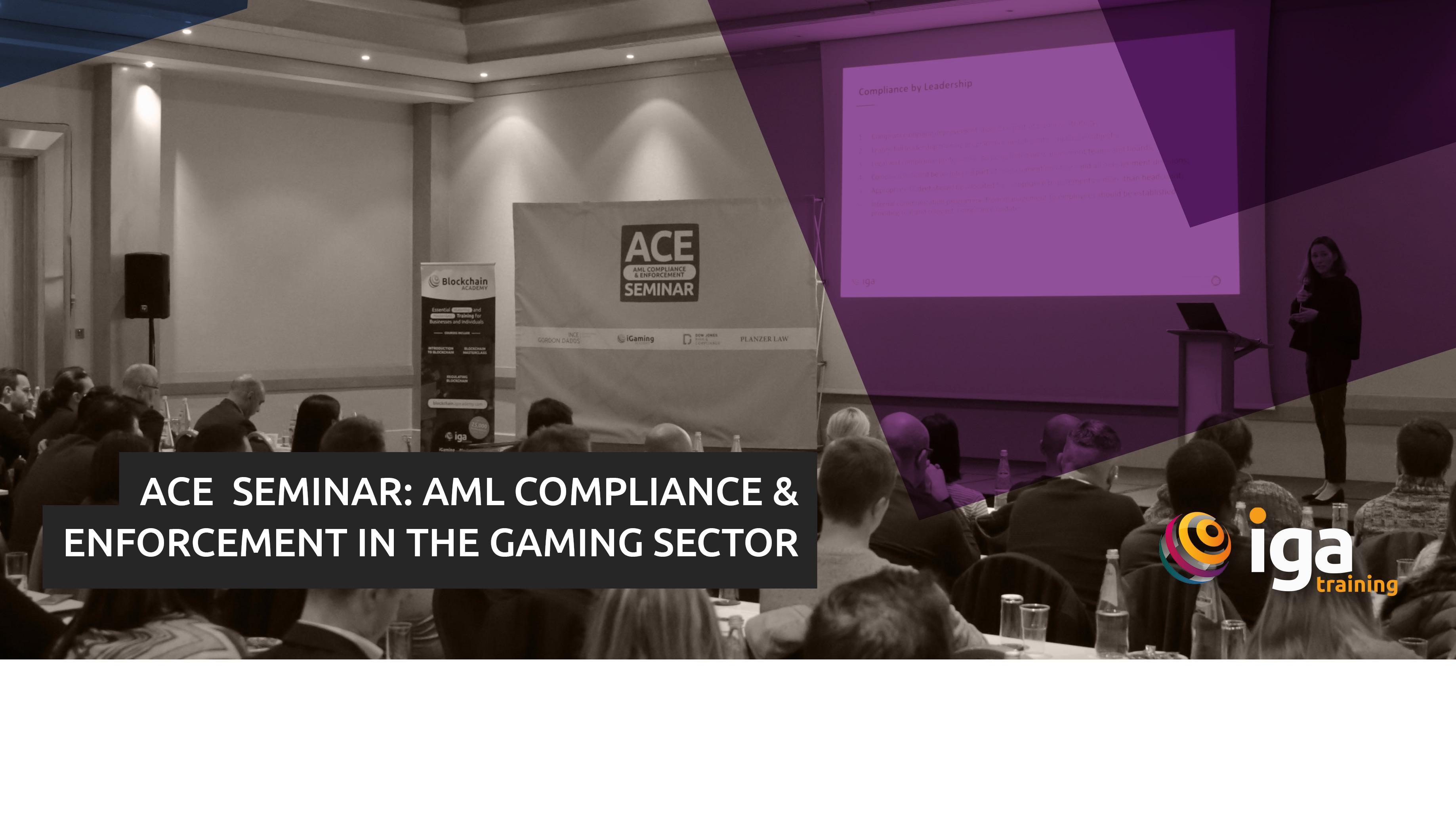 Over 100 Industry Attendees at ACE